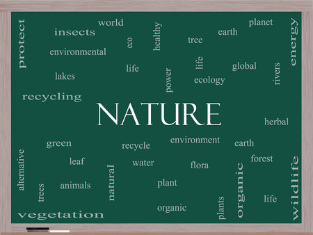 wildllife: Nature Word Cloud Concept on a Blackboard with great terms such as recycle, green, natural and more. Stock Photo