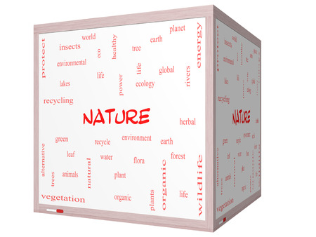 Nature Word Cloud Concept on a 3D cube Whiteboard with great terms such as recycle, green, natural and more.