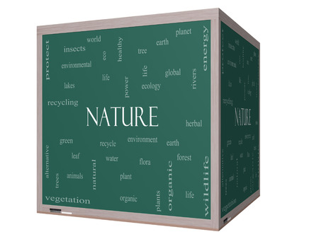 Nature Word Cloud Concept on a 3D cube Blackboard with great terms such as recycle, green, natural and more.