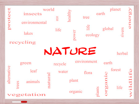 Nature Word Cloud Concept on a Whtiteboard with great terms such as recycle, green, natural and more. Stock Photo