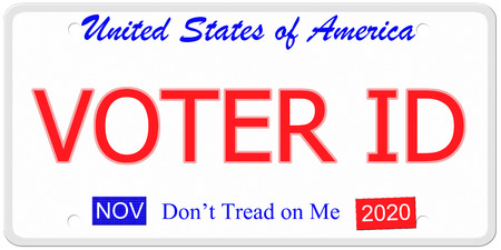 voter: Voter ID imitation United States license plate with dont tread on me written on it. Stock Photo