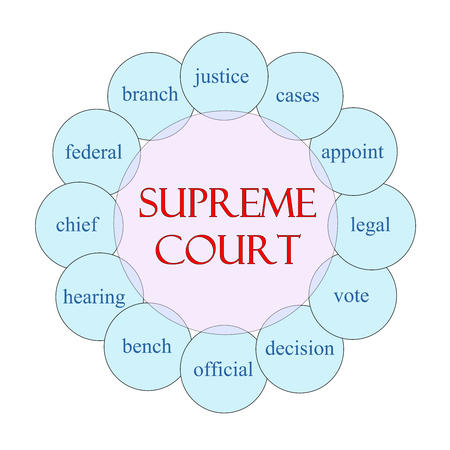 appoint: Supreme Court concept circular diagram in pink and blue with great terms such as justice, cases, legal and more.