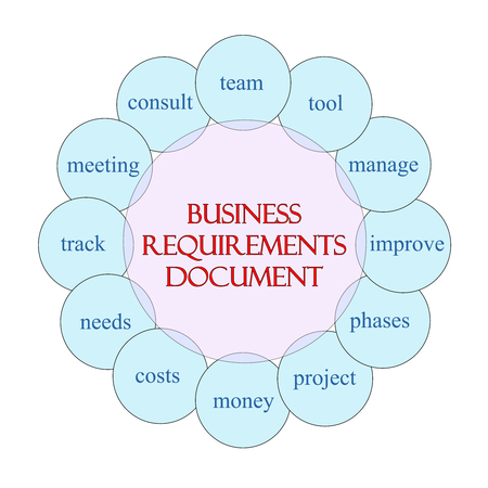 project charter: Business Requirements Document concept circular diagram in pink and blue with great terms such as project charter, measurements and more.