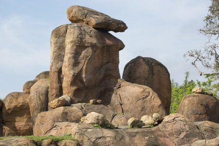 Safari rock formation where the lions normally sleep by trees Imagens