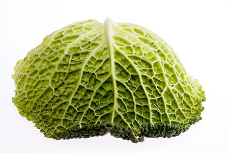 single leaf of young green brassica isolated on white background close up