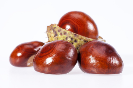 some fruits of chestnut isolated on white background, close up