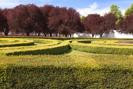 view on garden, Prague, Czech Republic, Europe