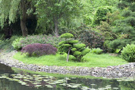 was: Japanese Garden, exotic plants, bonsai; Wroclaw, Poland. The Japanese Garden was founded in 1909-1913