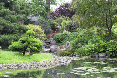 Japanese Garden, Exotic Plants, Wroclaw, Poland. The Japanese ...