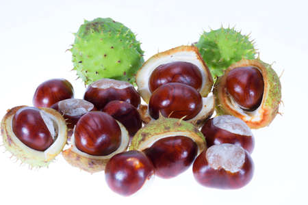 Group of fresh chestnuts isolated on white background, close up Foto de archivo