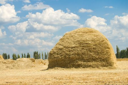 large stack of straw on a background blue sky with clouds photo