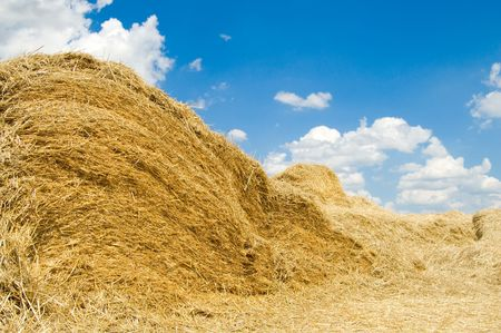 stack of straw on a background blue sky with clouds photo