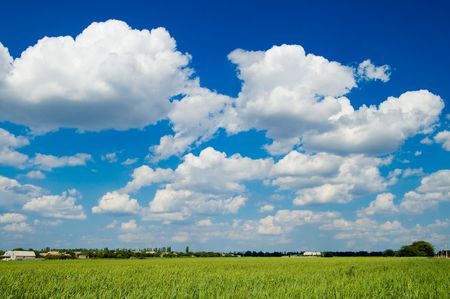 Landscape green filed the blue sky and white clouds photo
