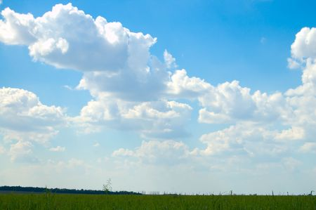 Landscape green filed the blue sky and white clouds Stock Photo - 3488502