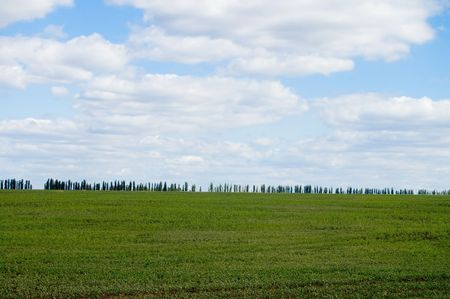 field and sky Stock Photo - 3529525