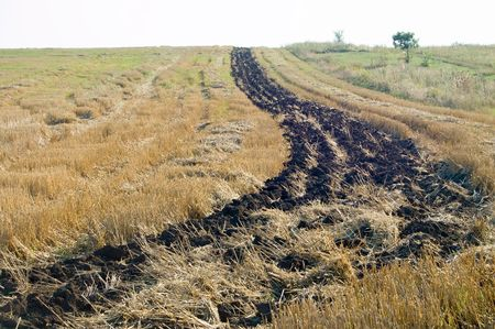 fallow bar of black earth on the field after a harvest photo