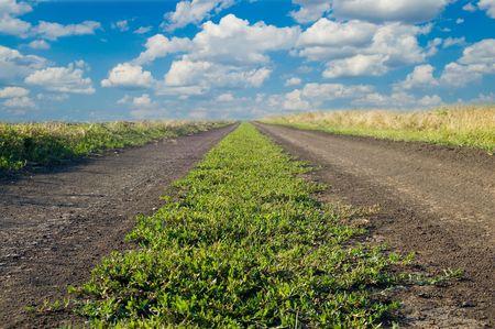rural green road follow to the horizon Stock Photo - 3596341