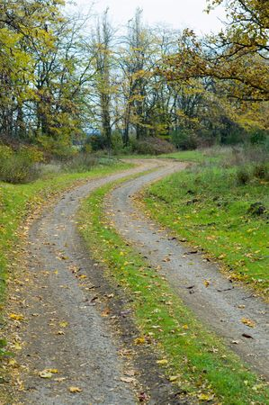 a rural road goes to the forest Stock Photo - 3780339