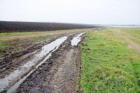 rural road after rain photo