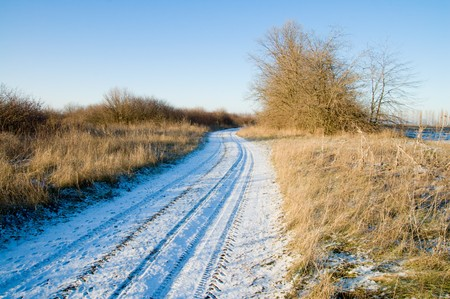 winter road through the wood photo