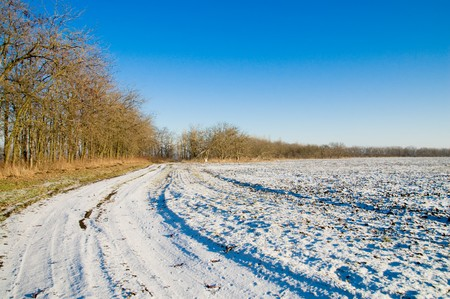 turn of winter white road photo