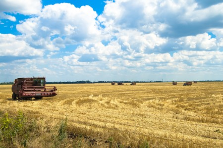combine harvester working a wheat field photo