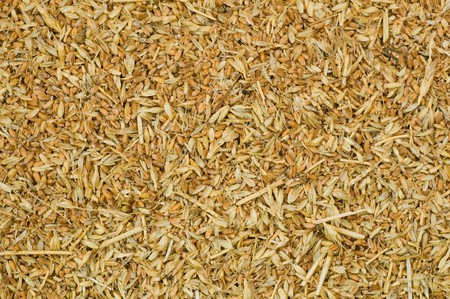 background from grains with a husk photo