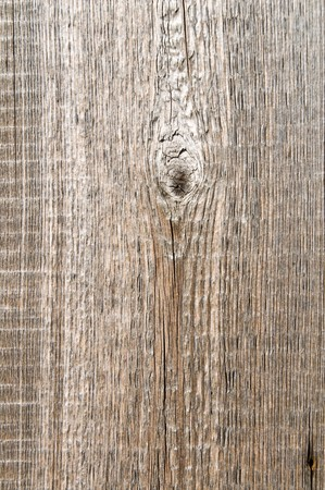 good textured surface of wood photo