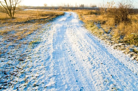 winter road with snow through the meadow Stock Photo - 4493770