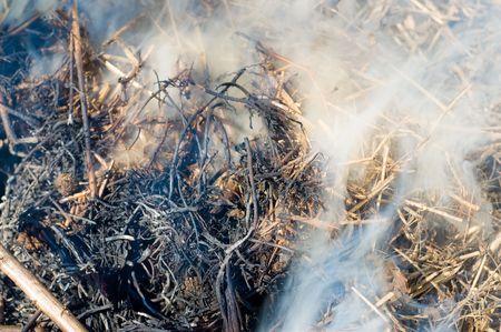 smoke on a dry heap photo