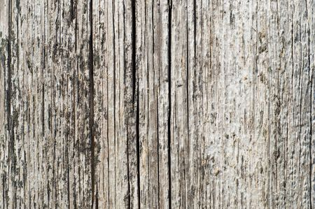 textured surface of board with a crack Stock Photo - 5319563