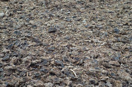 arid soil textured photo