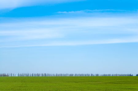 blue sky and green field photo