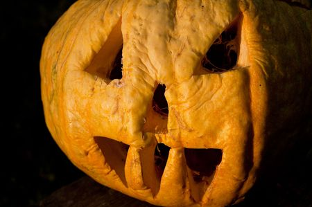 halloween pumpkin in evening photo