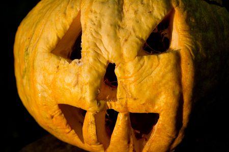 halloween pumpkin in evening Stock Photo - 5954851