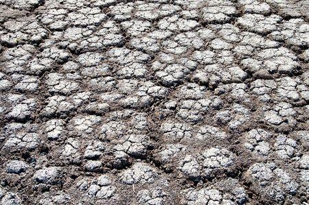 waterless: black cracked waterless earth