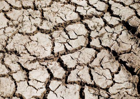desert rough land dry crack erosion Stock Photo - 6139050