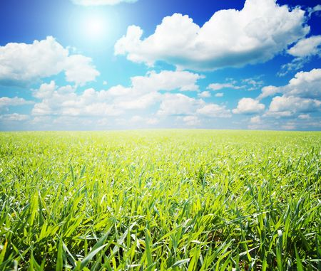 green and blue color nature field with sun Stock Photo - 6475150