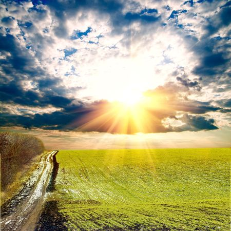 forest path: Spring landscape with sun and clouds Stock Photo