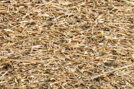 straw closeup as background photo