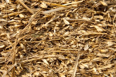 image of pressed straw with husk photo