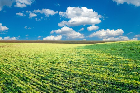 good green field and blue sky in spring photo