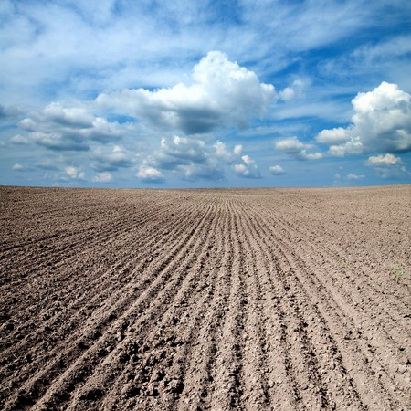 black ploughed field under blue sky Stock Photo - 7155573