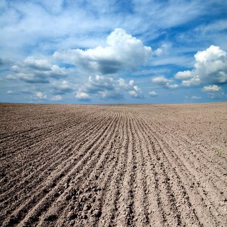 black ploughed field under blue sky photo