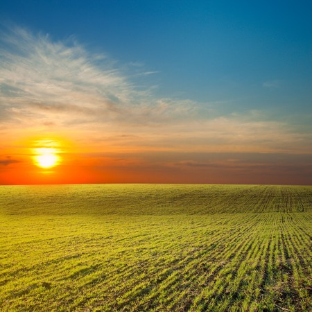 last sunrays under green field Stock Photo - 7155568