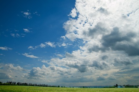 field of green wheat under cloudy sky photo