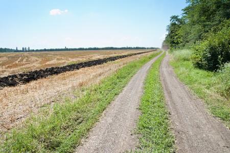 rural road near field Stock Photo - 7558973