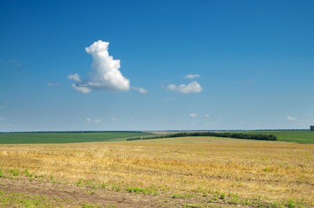 view to field after harvesting Stock Photo - 7558949
