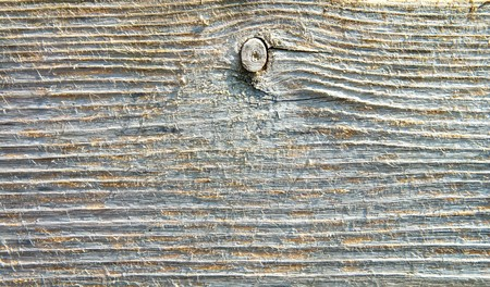 textured surface of board with a twig Stock Photo - 7558981