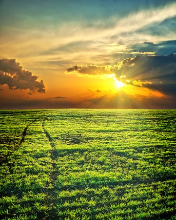 last sunrays over green field with path photo